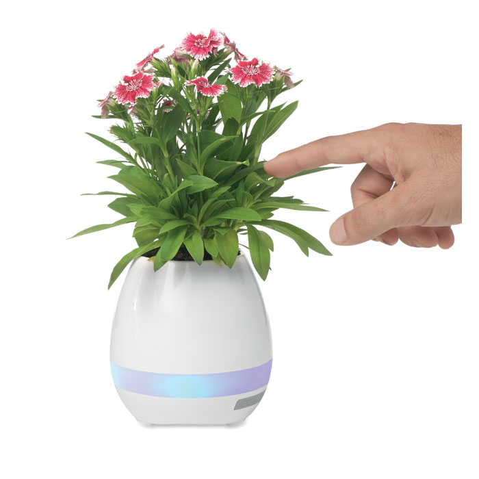 Głośnik Flor